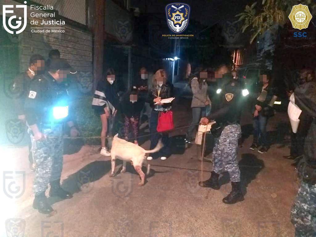 En cateo, FGJ y SSC rescatan a un canino que posiblemente era maltratado