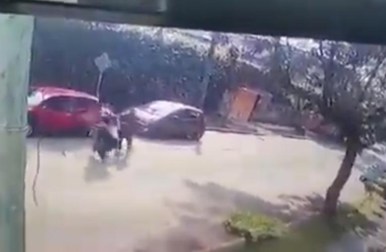 VIDEO: Atacan a estudiante en Cuernavaca con disparo en la cabeza