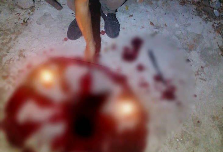 (IMAGÉNES SENSIBLES) Encuentran animales sacrificados en ritual en Veracruz
